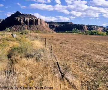 00000-02446 Fenceline showing overgrazed pasture at TNC's Dugout Ranch Utah George Wuerthner-