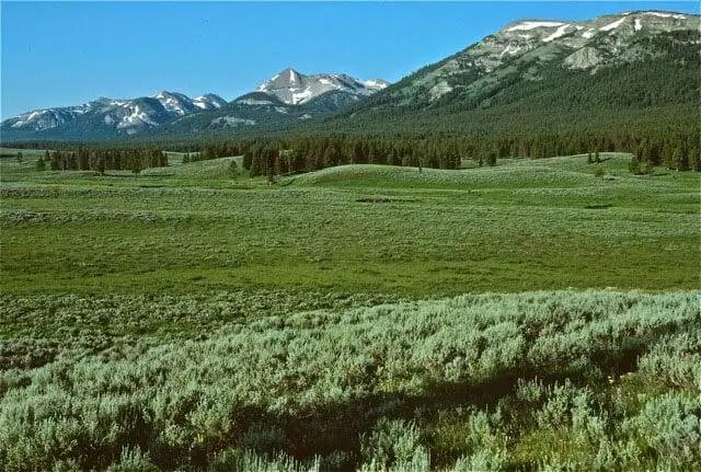 Montana – Bozeman Broadband