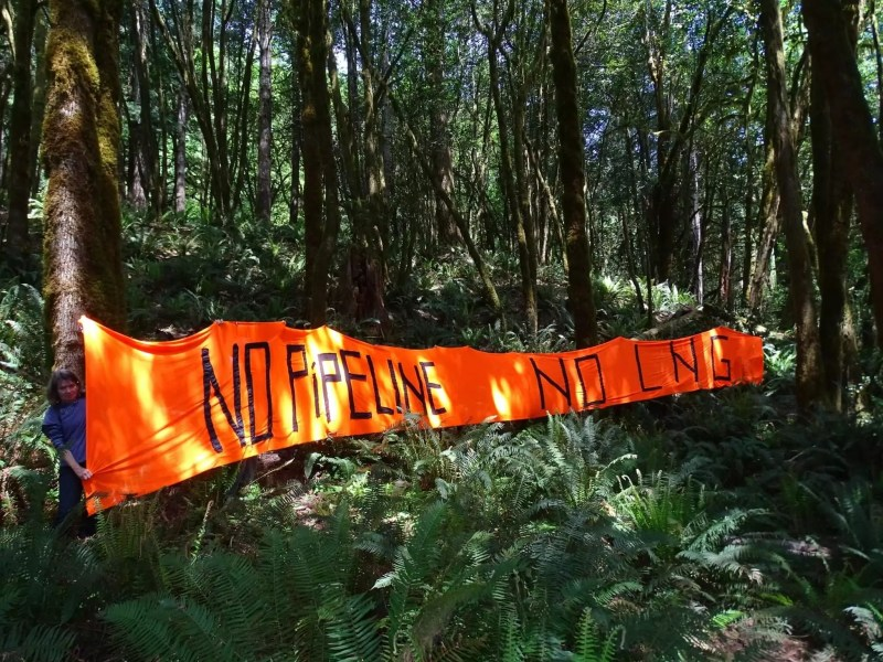 March 19 – Rivers, Forests, Health and Climate: Say No to Jordan Cove!