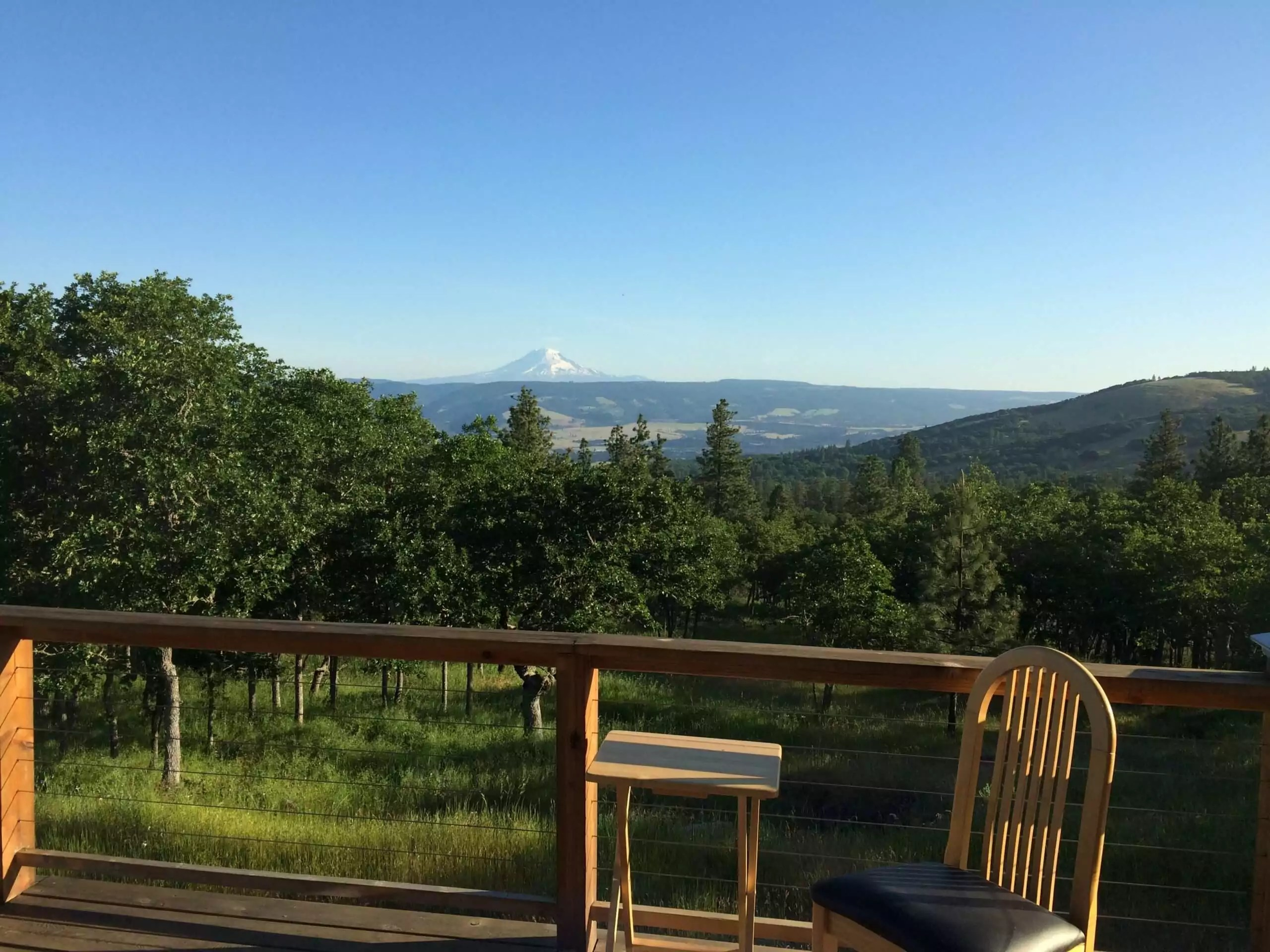 View from Micky and John's deck