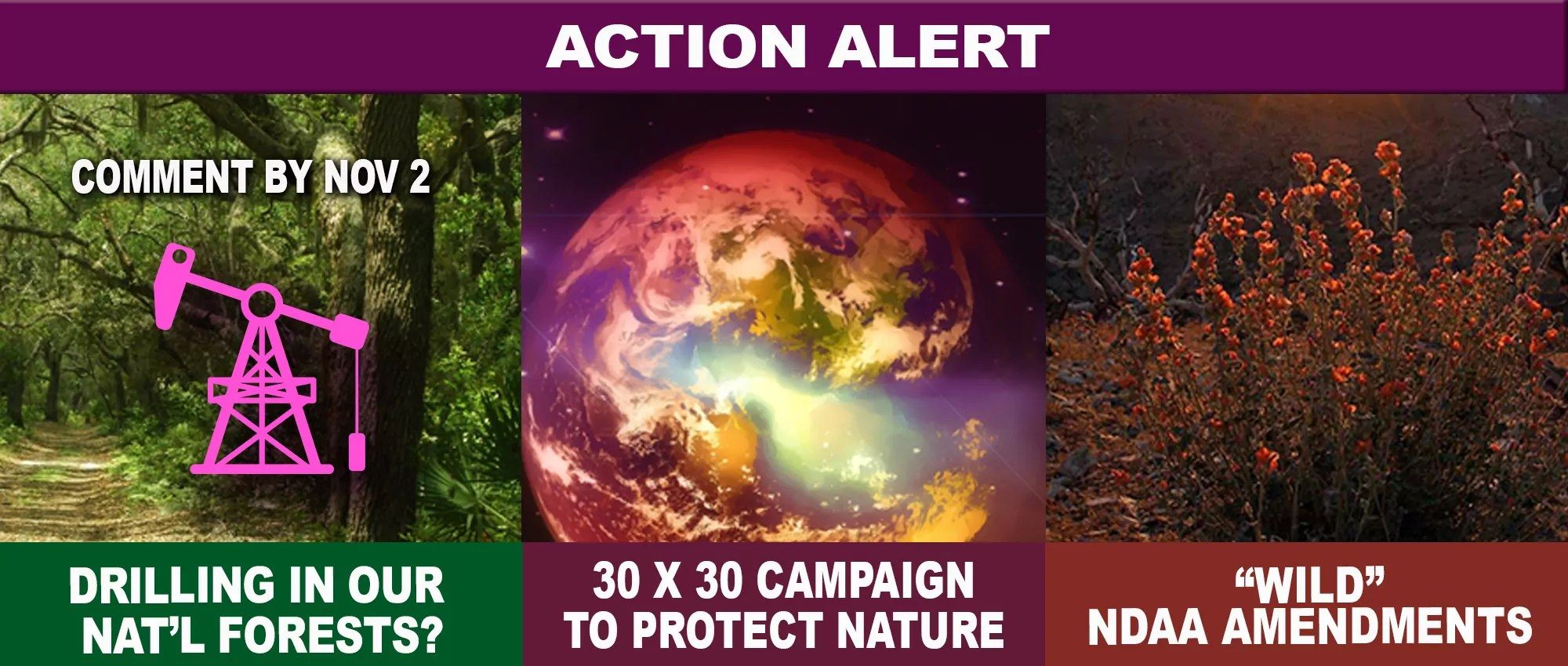 Sept20-actionalert