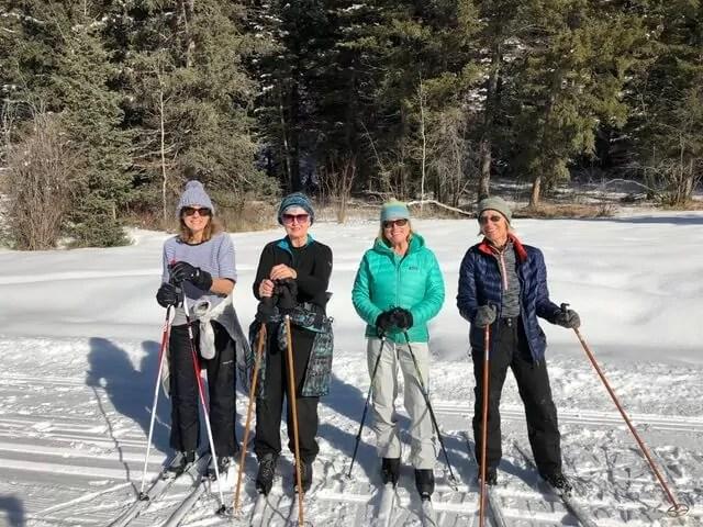 Through April 2021 – WHALES Winter Adventures