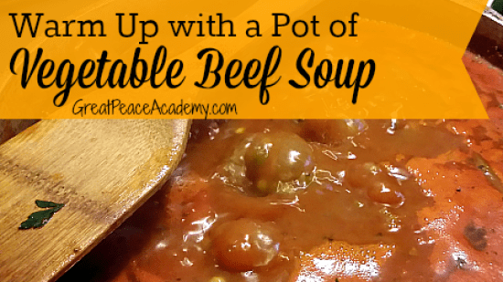 Vegetable Beef Soup Recipe at Great Peace Academy