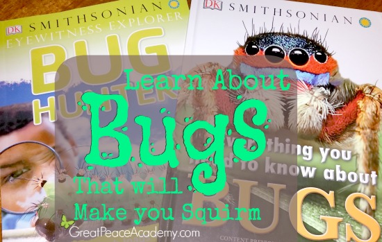 Learn about Bugs that will make you squirm. | Great Peace Academy