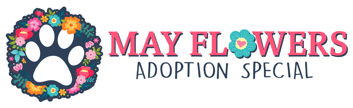 May Flowers Adoption Special