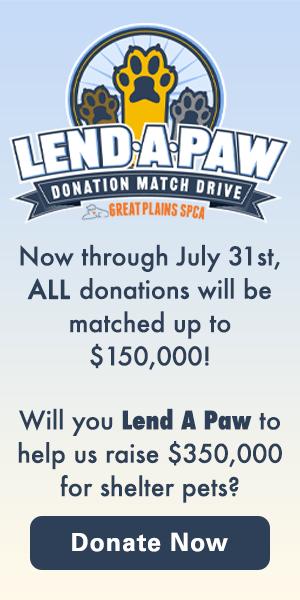 Lend-A_Paw Donation Match Drive 2021