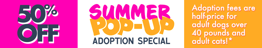 Summer Pop-Up Adoption Special Now through July 31st, adoption fees are half-price for adult dogs over 40 pounds and adult cats!