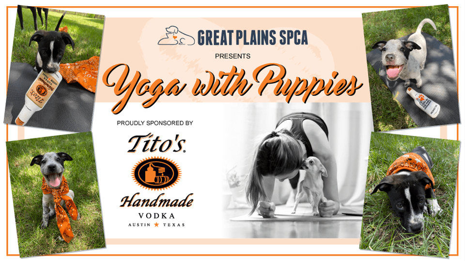 Yoga with Puppies presented by Tito's Handmade Vodka