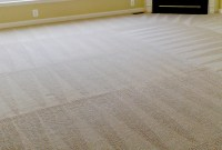 DIY Carpet Cleaning and the Best Time of the Year to Clean ...