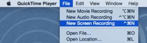 Screen Recording Menu