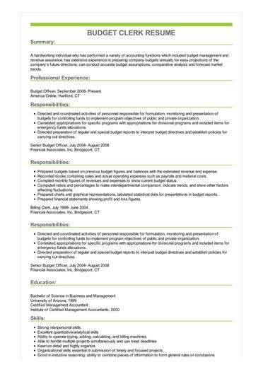 Sample Budget Clerk Resume