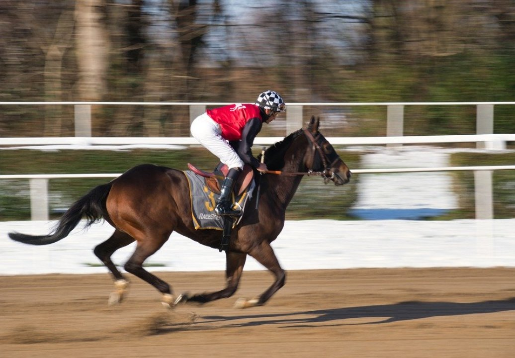 Horse Riding Top 10 Luxurious Hobbies In The World 2020 greattopten.com