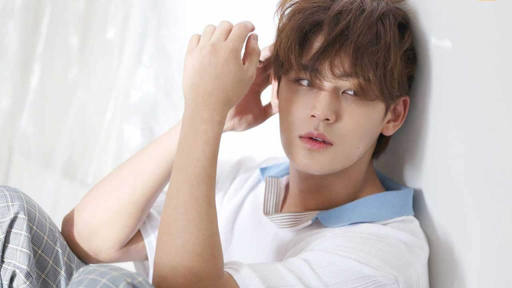 Mingyu (SEVENTEEN) MOST HANDSOME 2021