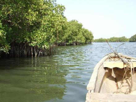 Bintang Bolong River Trip