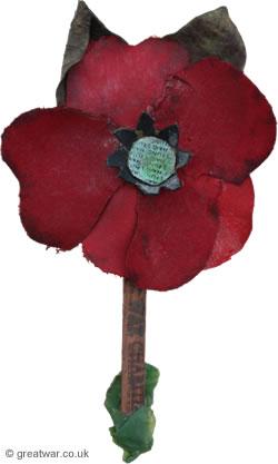 Haig Fund Poppy