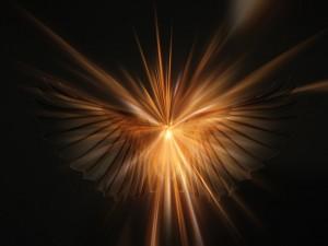 angel-645591_640