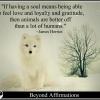 fox-soul-James Herriot