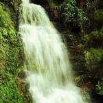 Lichtenstein Hout Bay waterfall