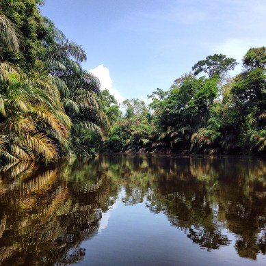 Tortuguero National Park, Exploradores Outdoors, Costa Rica