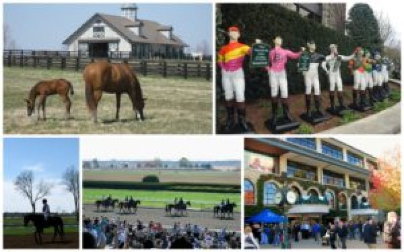 Keeneland, Horse Races, Kentucky