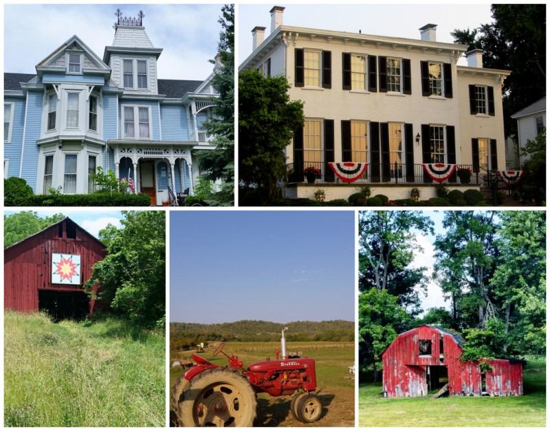 Augusta, Rabbit Hash, Covington, Owenton Kentucky