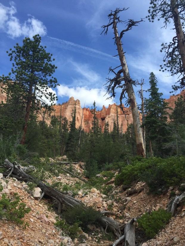 Utah Road Trip