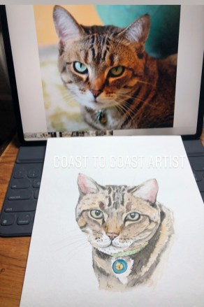 Custom Cat Art
