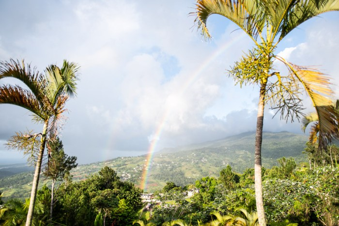 yunque rainforest, hotel, puerto rico itinerary
