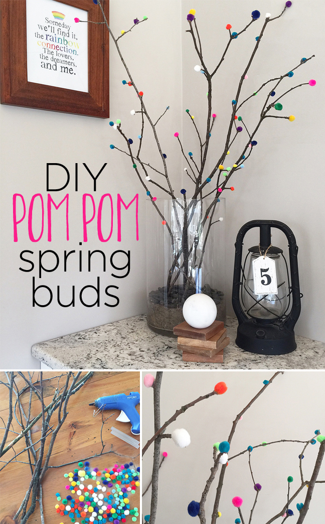 pompom buds_long with text