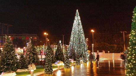 christmas-tree-athens