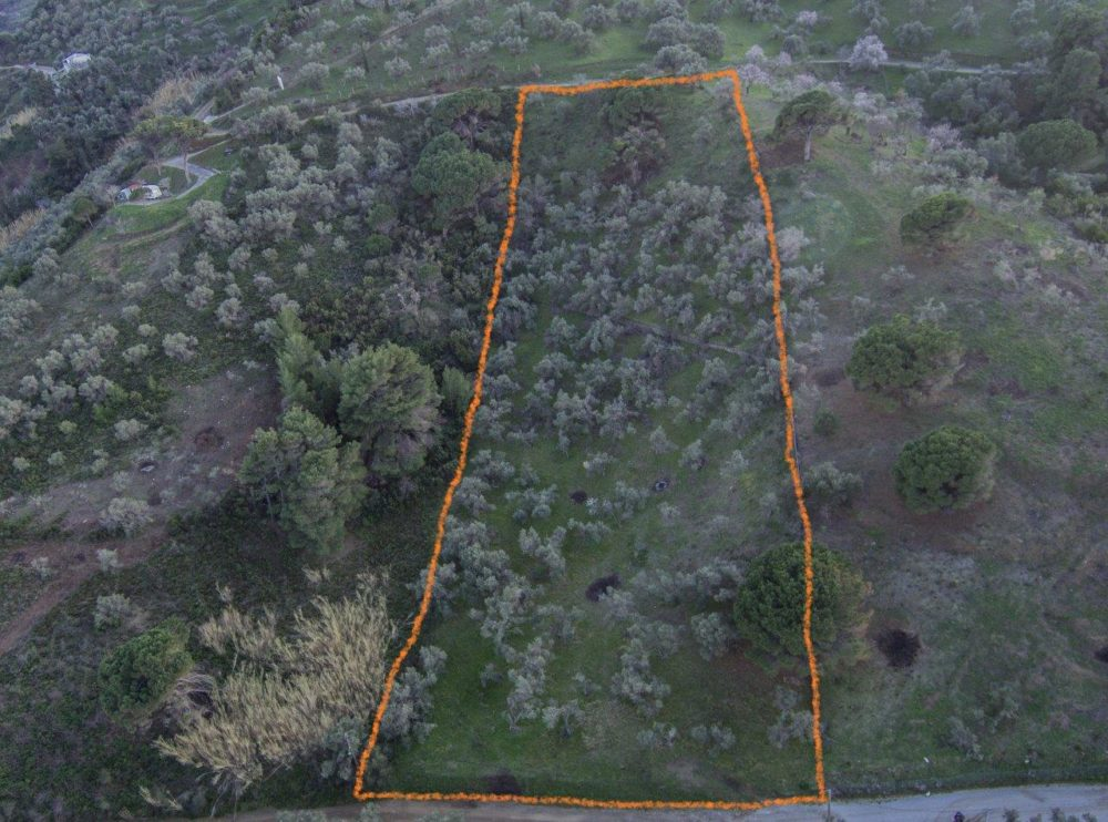 IMG_20180212_170159 — LAND FOR SALE 1