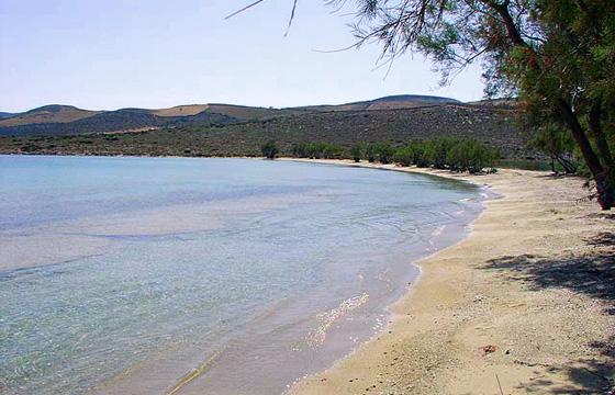 Παραλία Ψαραλυκή, Αντίπαρος