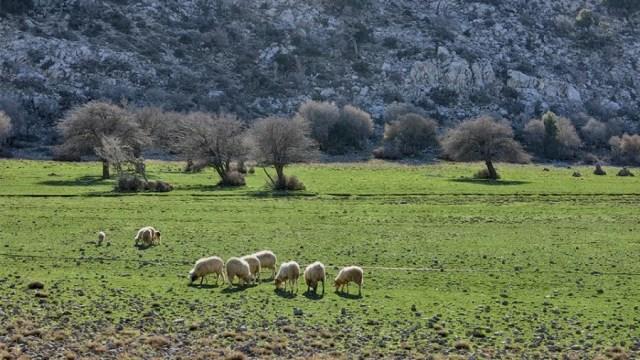 Kato Symi, Crete - A Traveler's Gate to Heaven