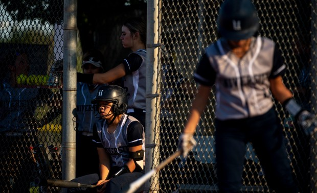 GREELEY, CO - SEPTEMBER 03:The University dugout watches during a softball game between the University Bulldogs and the Sterling Tigers at Twin Rivers Ball Fields in Greeley Sept. 3, 2020. The Tigers defeated the Bulldogs 6-4. (Alex McIntyre/Staff Photographer)