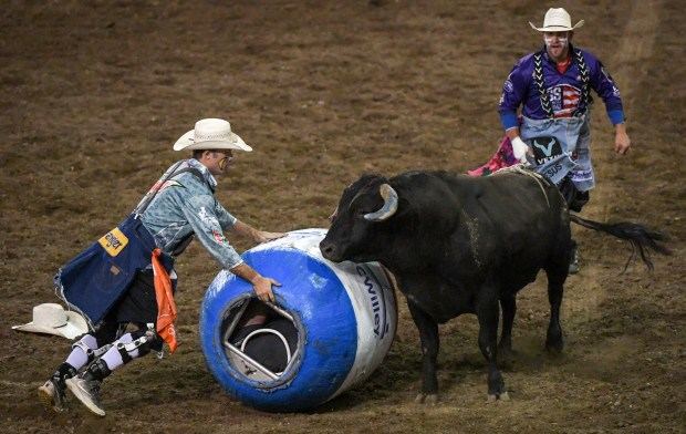 GREELEY, CO - JUNE 30:Bullfighter Ryder Rich, left, keeps the barrel between him and the bull on the sixth and final day of the PRCA ProRodeo Series during the 99th Greeley Stampede at Island Grove Regional Park in Greeley June 30, 2021. (Alex McIntyre/Staff Photographer)