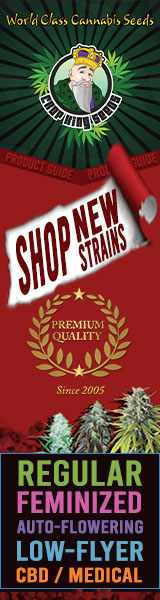 Crop King Seeds (COM) - Shop New Strains World Class Cannabis Seeds 160x600