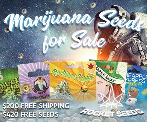 Rocket Seeds - MJ Seeds For Sale Space Man 300x250