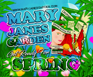 Mary Jane's Garden - Get Ready For Spring 300x250