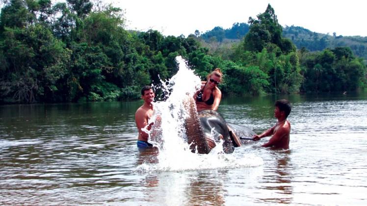 Elephant Bathing Khao Lak Tours