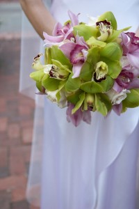 Have a #green wedding and save money and go green with your wedding dress. #wedding