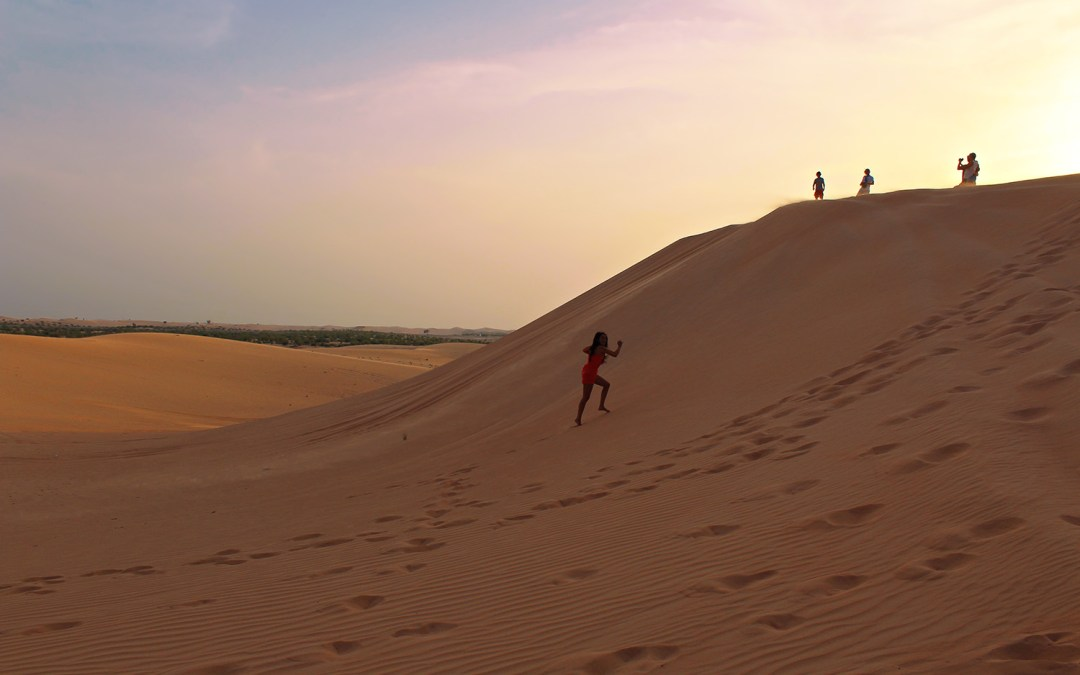 DESERT SAFARI TOUR IN ABU DHABI