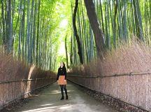 Arashiyama-Sagano: A walk through Western Kyoto | Green ...