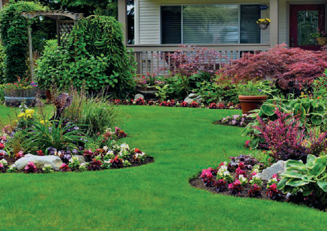 yard and flowerbeds