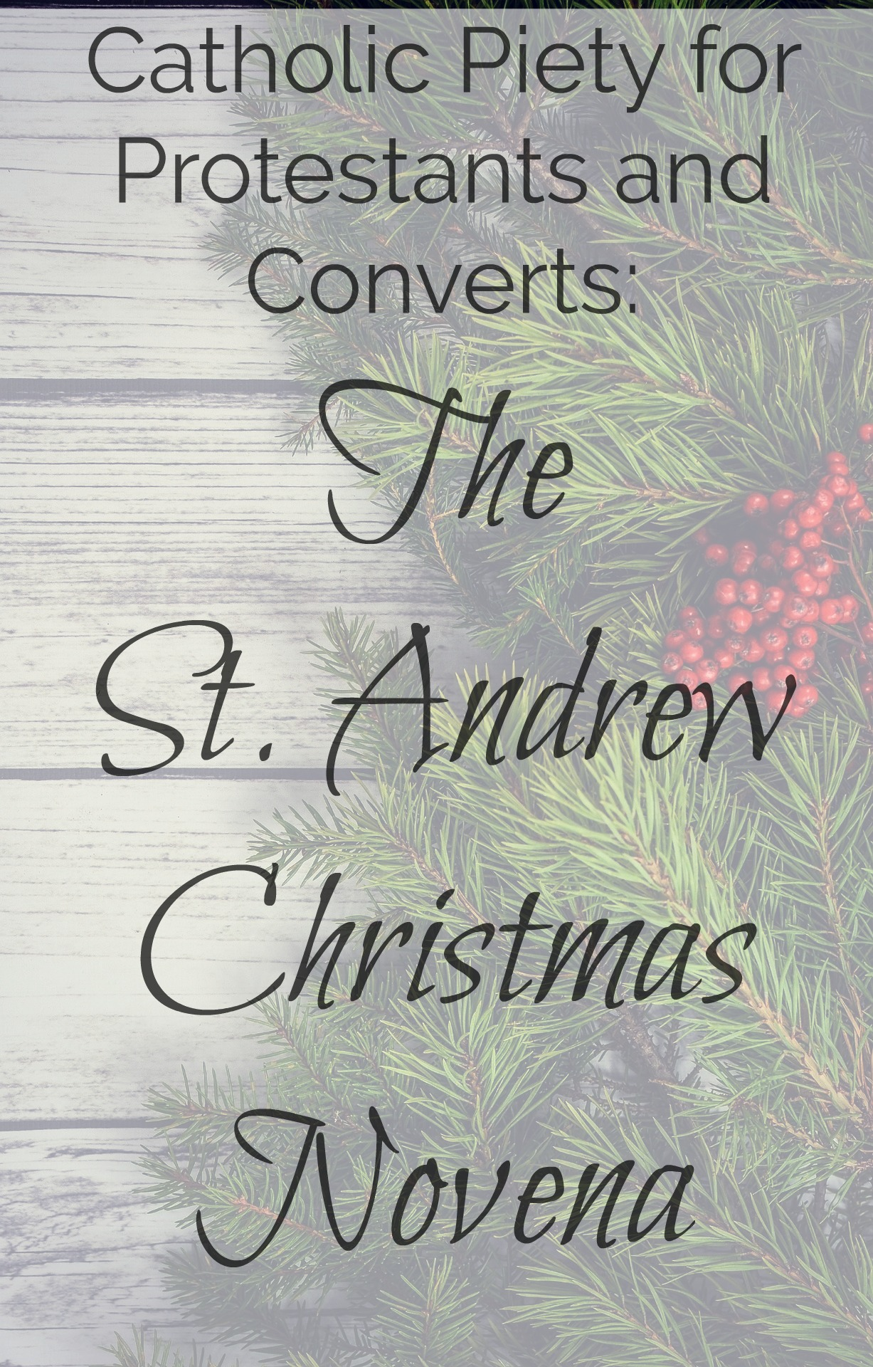 This is a graphic of St Andrew Novena Printable in christmas