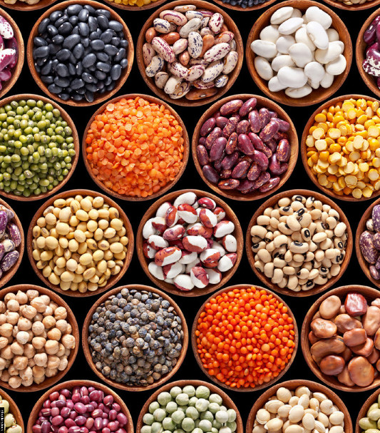Legumes for stress - A versatile vegetarian power-foods