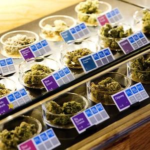 buy medical marijuana