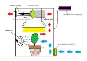 Manage OdorAIR From Marijuana Grow Room