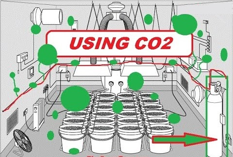 grow room designs with pictures and diagram cherokee xj wiring creating co2 for your indoor green cultured elearning