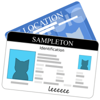 How to Determine Valid Identification