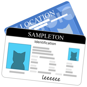How to Determine Valid Identification